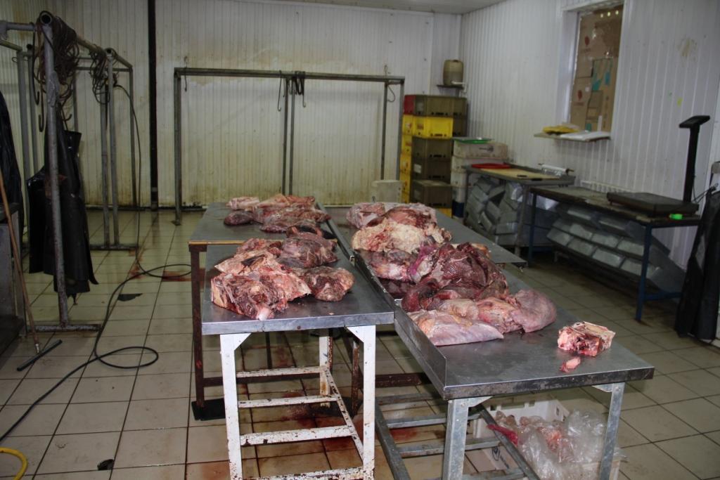 В школы Омска поставлялось контрафактное мясо под марками известных брендов